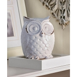 DISTRESSED WHITE OWL FIGURINE - HOME ACCENTS